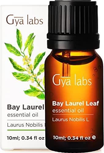 Gya Labs Lorbeerblätter Ätherisches Öl für Haare und Schmerzlinderung - Reine Lorbeeröl für Schlaf - 100 Naturreine Lorbeerblattöl für Diffuser Aromatherapie, Aromaöl und Duftöl - 10ml