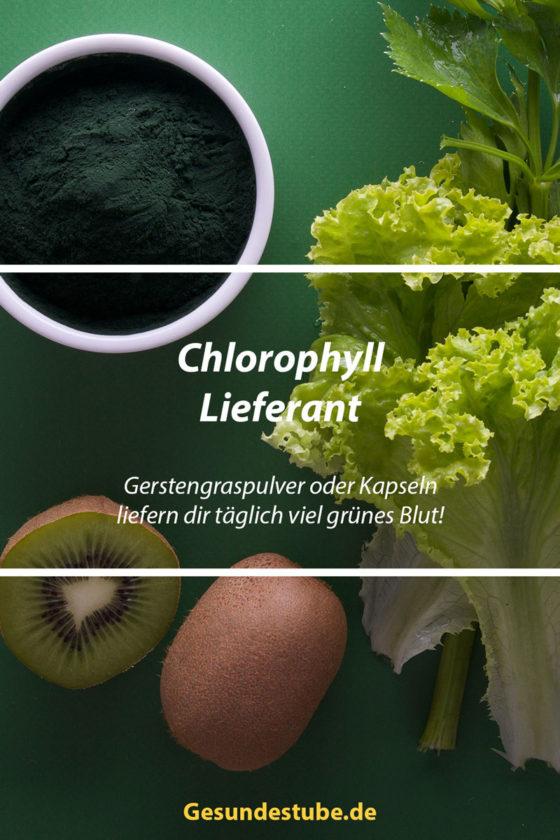 Gerstengras als Chlorophyll-Lieferant