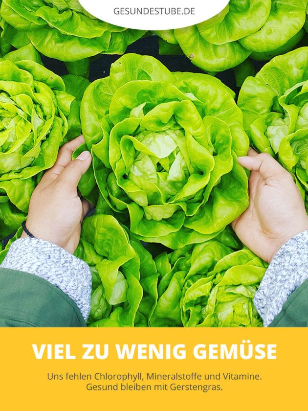 Wir essen zu wenig Gemüse. Gerstengras kann helfen.