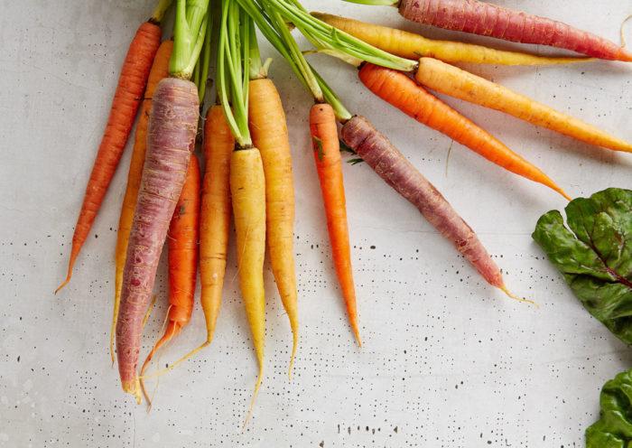 Karottenöl-Ratgeber auf Gesundestube.de