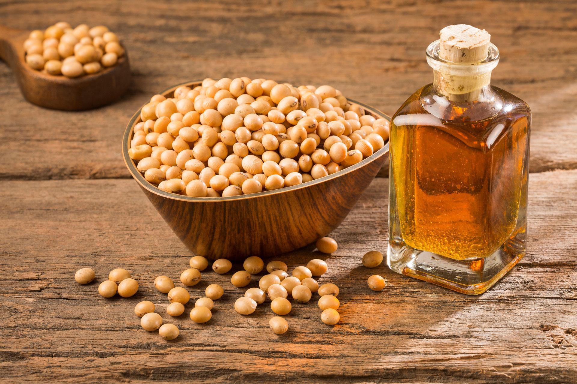 Sojabohnen und Sojaöl nebeneinander auf Holztisch