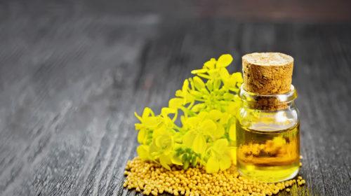 Senföl-Flasche neben Senfblüten und Senfkörnern auf Holzplatte